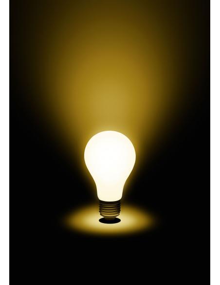 EGLO 11596 - LM LED E27 Bombilla